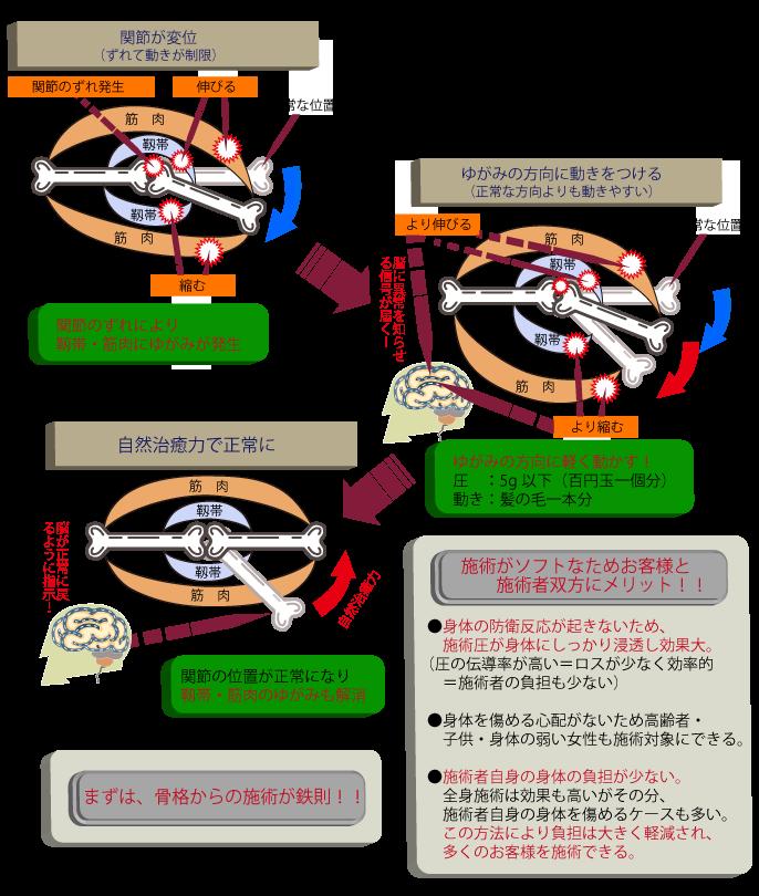 オステオパシー誇張法の特徴